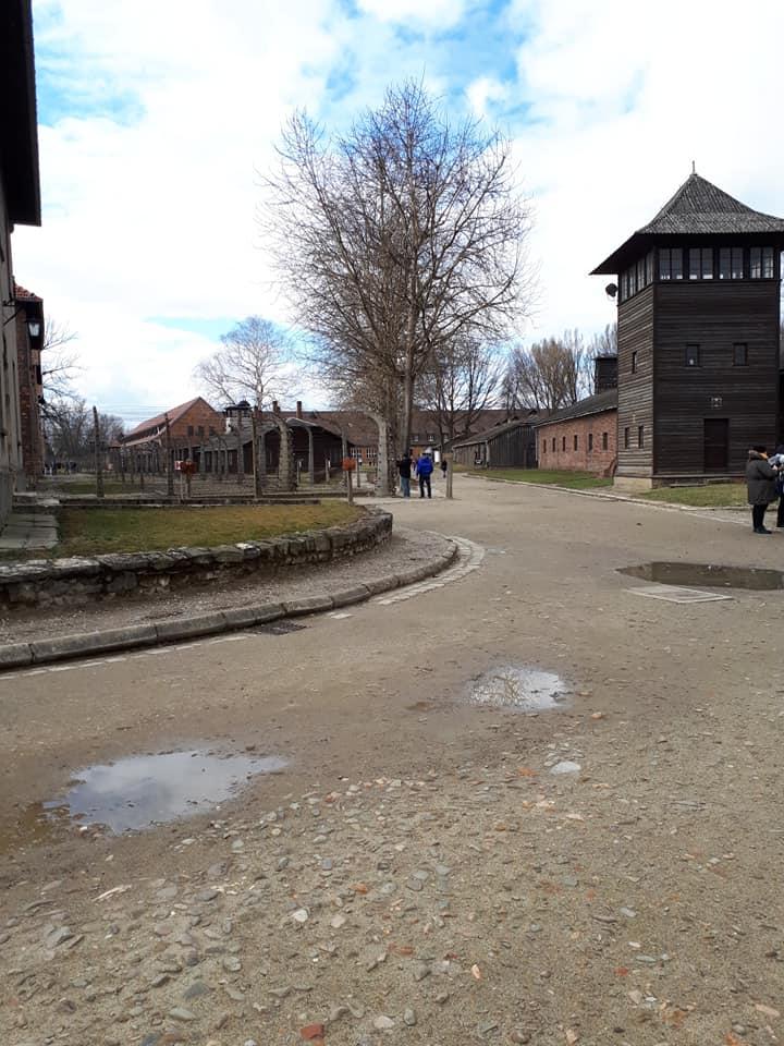 Auschwitz Memorial / Muzeum Auschwitz i Muzeum Auschwitz Birkenau